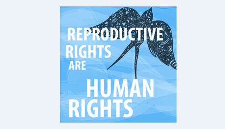 """SRHR Meeting point on """"Human rights based approaches to Sexual and Reproductive Health"""""""
