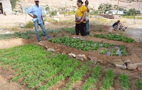 Spargruppen und Hausgärten sichern die Ernährung