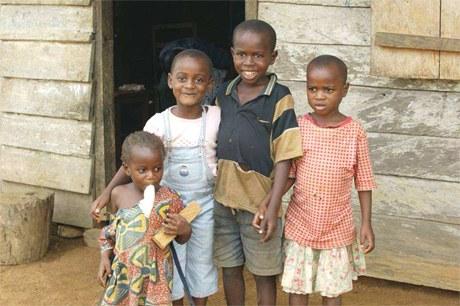 Afrikanisches Regionalprogramm HIV / Aids