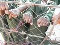 Sambia - Stärkung von Menschen im Strafvollzug und deren Familien