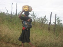 Conference 2008: AIDS and Livelihoods – Securing property and inheritance rights