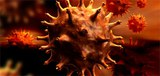 HIV pandemic's origins located